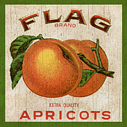 Appricots-Wall Plaque