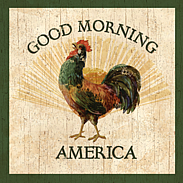 country rooster-wall plaque