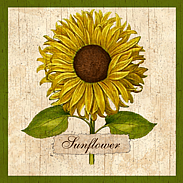 country sumflower-wall plaque