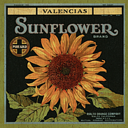 country sunflower-wall plaque