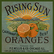 country oranges-wall plaque